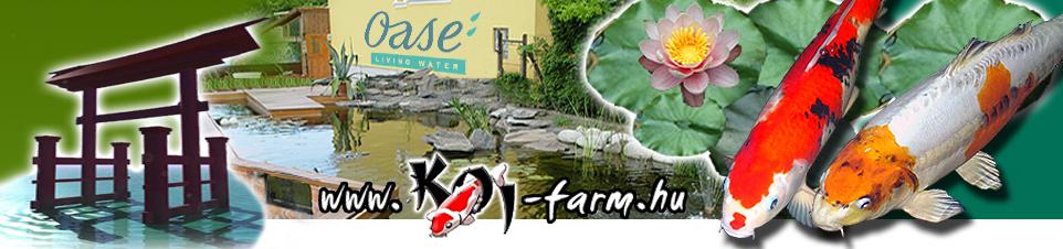KOI-FARM kerti tó családi nyilt nap 2010.06.05.