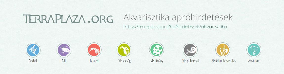 terraplaza_akvarista.jpg